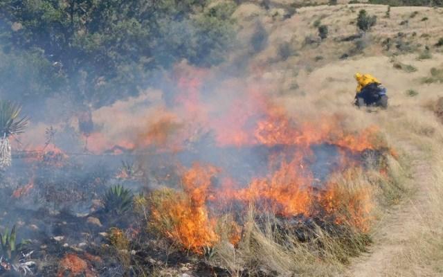 Conafor reporta 115 incendios forestales en 21 estados - Incendio forestal. Foto de @CONAFOR