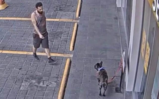 #Video Roban a perro en gasolinera de la CDMX - Robo de Bulldog Francés. Captura de pantalla