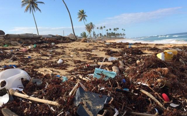 Personas consumen una tarjeta de crédito en plástico a la semana - Basura plástica en playa de República Dominicana. Foto de Dustan Woodhouse / Unsplash