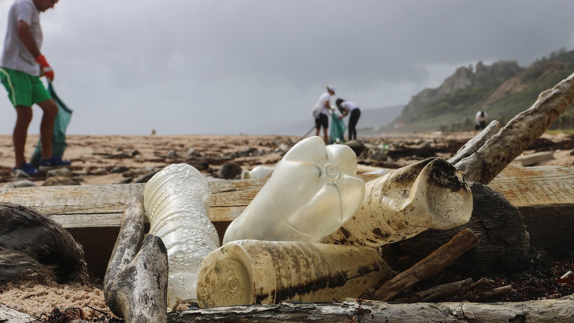 Botellas de plástico en playa. Foto de Brian Yurasits / Unsplash