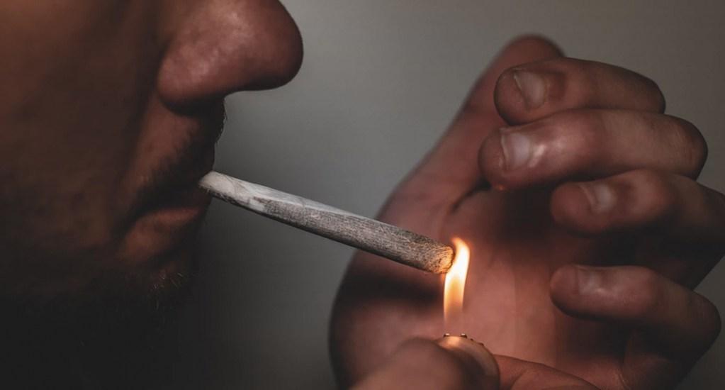Conmemoran el Día contra la Lucha del Uso Indebido de Drogas - Foto de GRAS GRÜN @weedshots