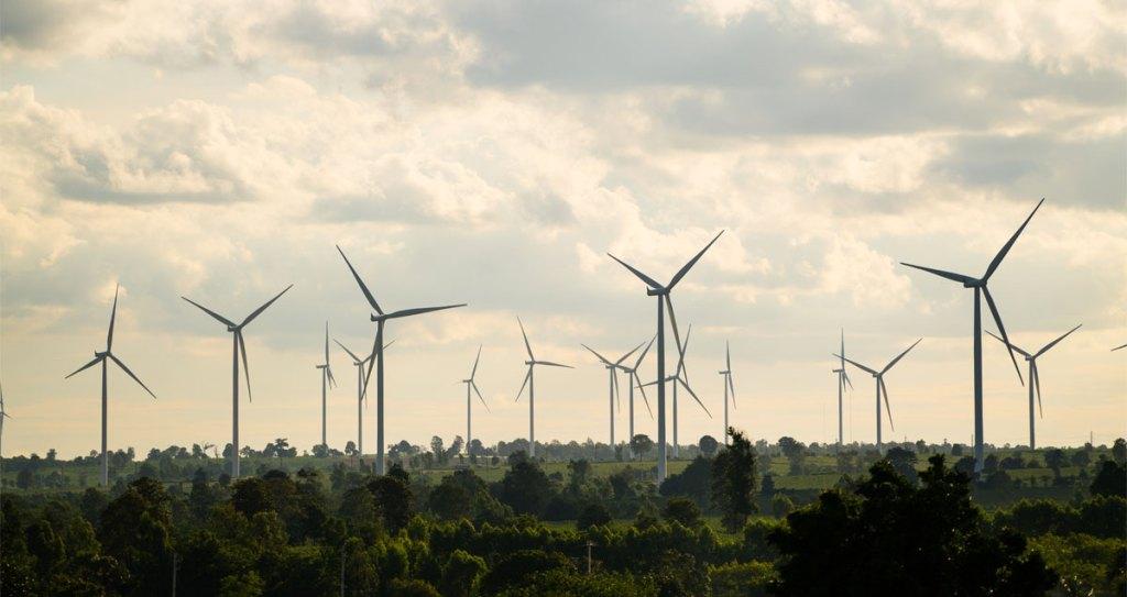 Los beneficios de cuidar el medio ambiente - Foto de Industria Mexicana de Coca-Cola