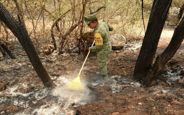 Incendios forestales afectan 484 mil 355 hectáreas en México - Foto de Notimex-Especial.