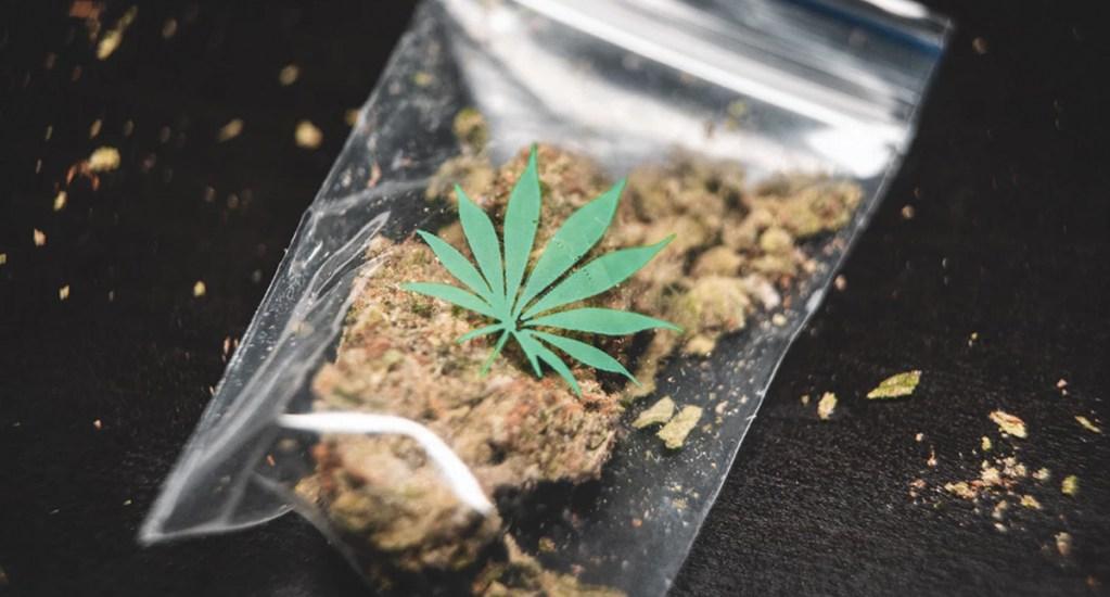 Aumenta 30 por ciento muertes por consumo de drogas en el mundo - Foto de GRAS GRÜN @weedshots