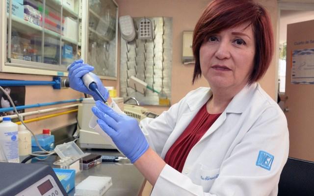 Identifican gen que influye en el desarrollo de la diabetes tipo 2 - La especialista mexicana María Teresa Tusié Luna, del Instituto de Investigaciones Biomédicas de la UNAM. Foto de EFE.