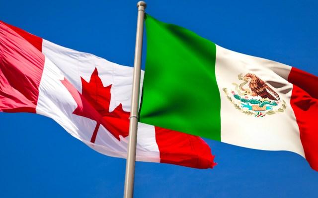 Mexicanos, los que más han solicitado refugio en Canadá en 2020 - canadá