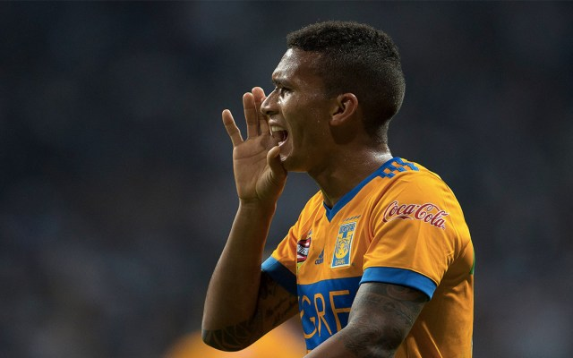 Tigres pierde a Francisco Meza por toda la temporada - francisco meza lesión rodilla tigres