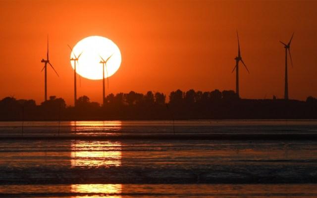 Ola de calor mantiene en alerta a países de Europa - Foto de EFE