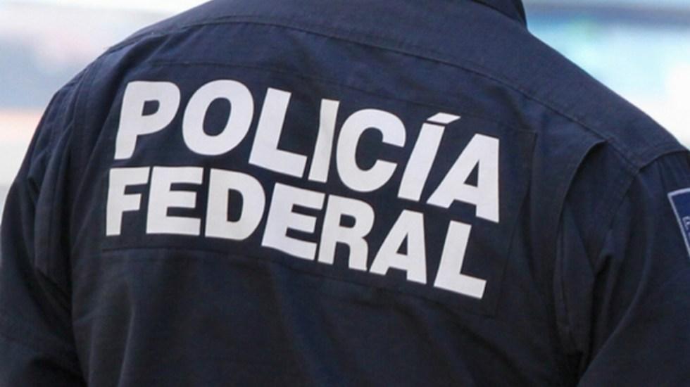 Liberan a exagente de la Policía Federal acusado de desvío de recursos - Policía Federal. Foto de Notimex/Archivo
