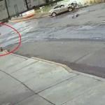 #Video Policías presenciaron choque y no auxiliaron a víctimas en CDMX