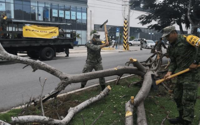 Aplican Plan DN-III-E, fase de Auxilio, en Mérida tras tormentas - Foto de Sedena