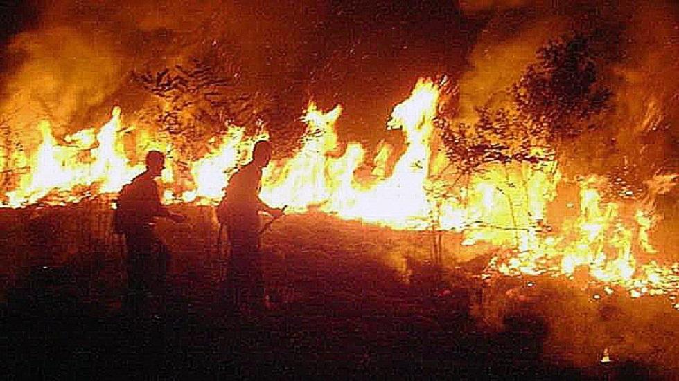 Bomberos combatiendo incendio de la Amazonía en Rio Branco. Foto de EFE