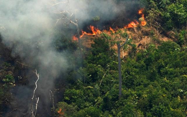 Fuerzas Armadas de Brasil combaten incendios en el Amazonas - amazonas
