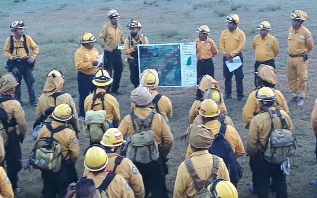 Controlan al 65 por ciento nuevo incendio en Biosfera de Sian Ka'an - Combatientes repasando plan de actuación contra incendio en Reserva de la Biosfera de Sian Ka'an. Foto de @CONAFOR