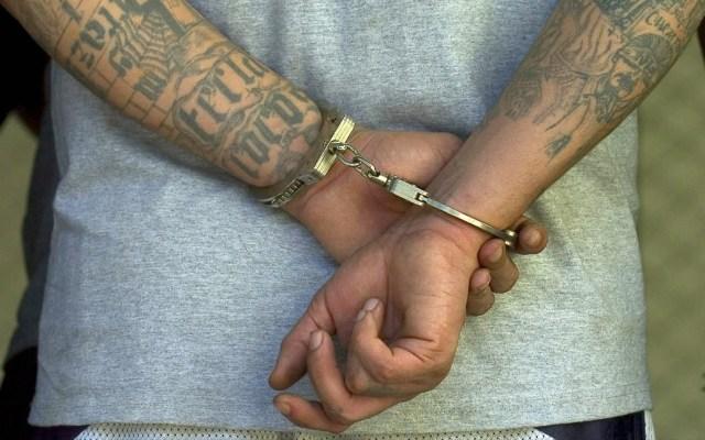 Acusan de asesinato a exlíder de la Mara Salvatrucha en Nueva York - Detenido Mara Salvatrucha MS13