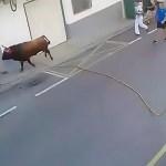 #Video Toro mata a hombre durante corrida en España