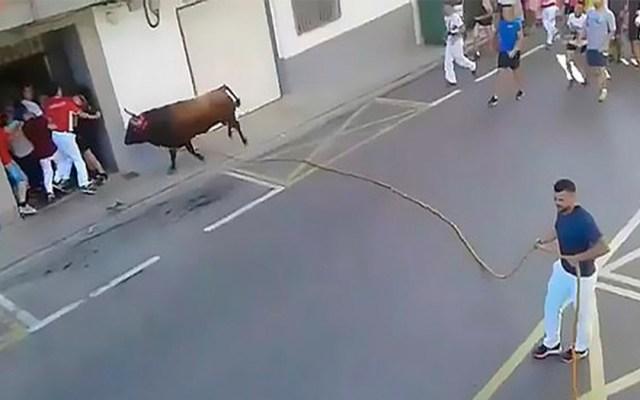 #Video Toro mata a hombre durante corrida en España - hombre muere corneado por toro en españa