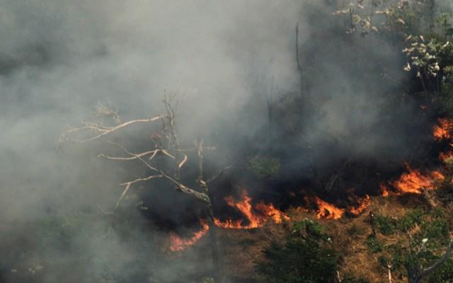 Protestan en ciudades europeas para pedir dimisión de Bolsonaro por incendios - Foto de EFE