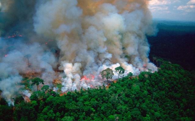 G-7 acuerda liberación de 20 mdd para combatir incendios en la Amazonia - Incendio en la Amazonía. Foto de @EmmanuelMacron