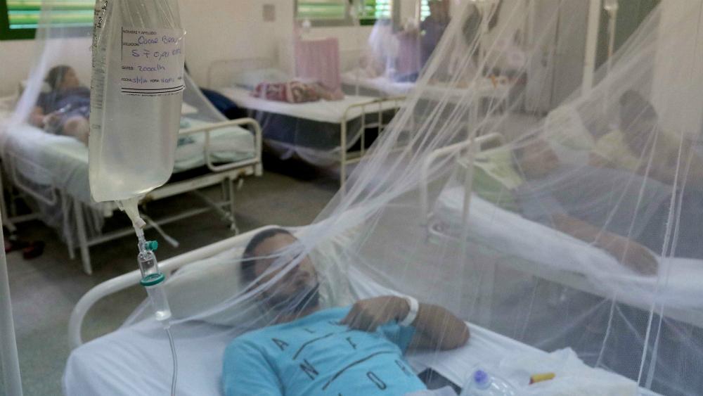 Cerca de 80 personas se contagian con dengue cada día en Nicaragua. Noticias en tiempo real