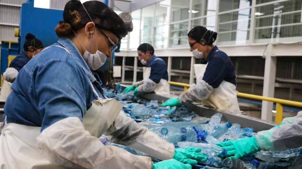 ¿Cómo lograr que ya no haya más plástico en el mar?