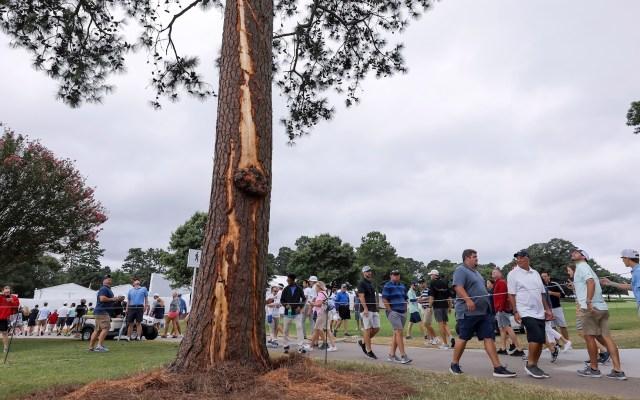 Rayo impacta árbol durante torneo de golf en Atlanta y deja seis heridos - Rayo golpea árbol Atlanta torneo Golf
