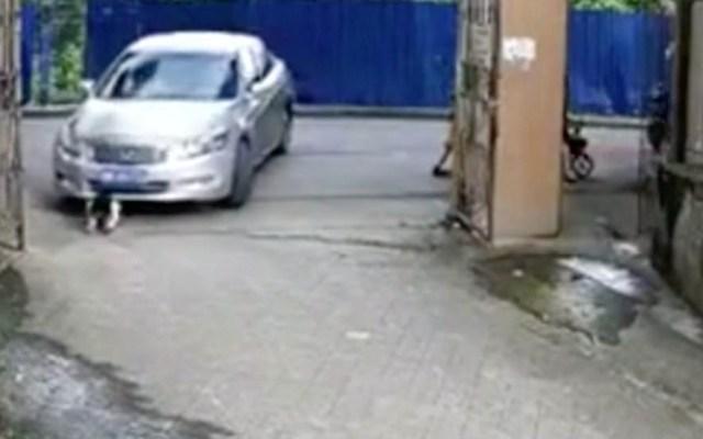 #Video Automóvil arrolla a niña de tres años en China - Captura de pantalla