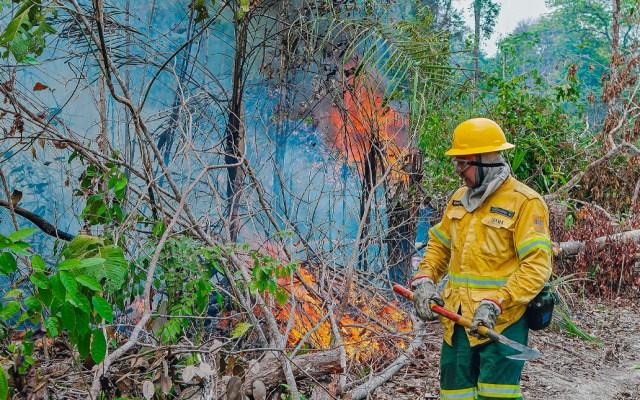 Brasil lanza campaña para mejorar imagen tras incendios en el Amazonas - Amazonas