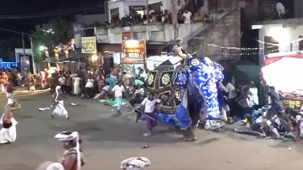 #Video Elefante pisotea a asistentes de desfile religioso en Sri Lanka