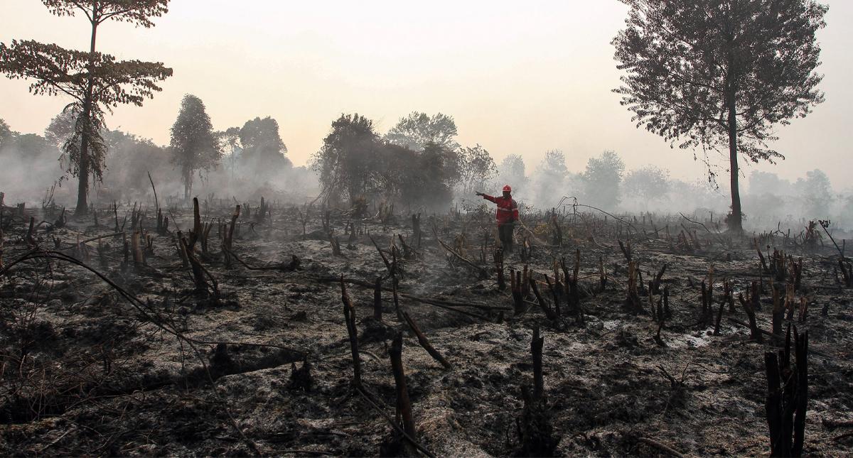 Incendios Indonesia