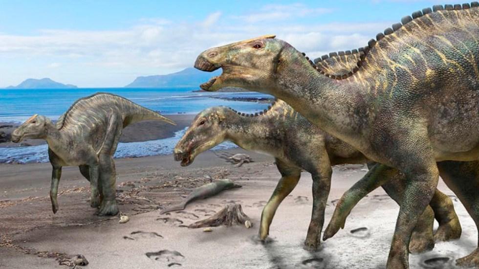 Descubren nuevo tipo de dinosaurio - nuevo dinosaurio