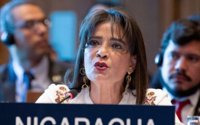 Nicaragua nombra a ex ministra de Defensa como embajadora ante la OEA - Ruth Tapia ex ministra de Defensa Nicaragua