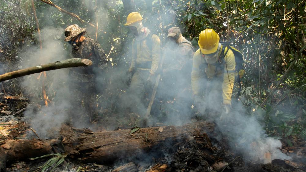 Deforestación en la Amazonia brasileña aumenta un 93 por ciento en lo que va de 2019 - Foto de EFE
