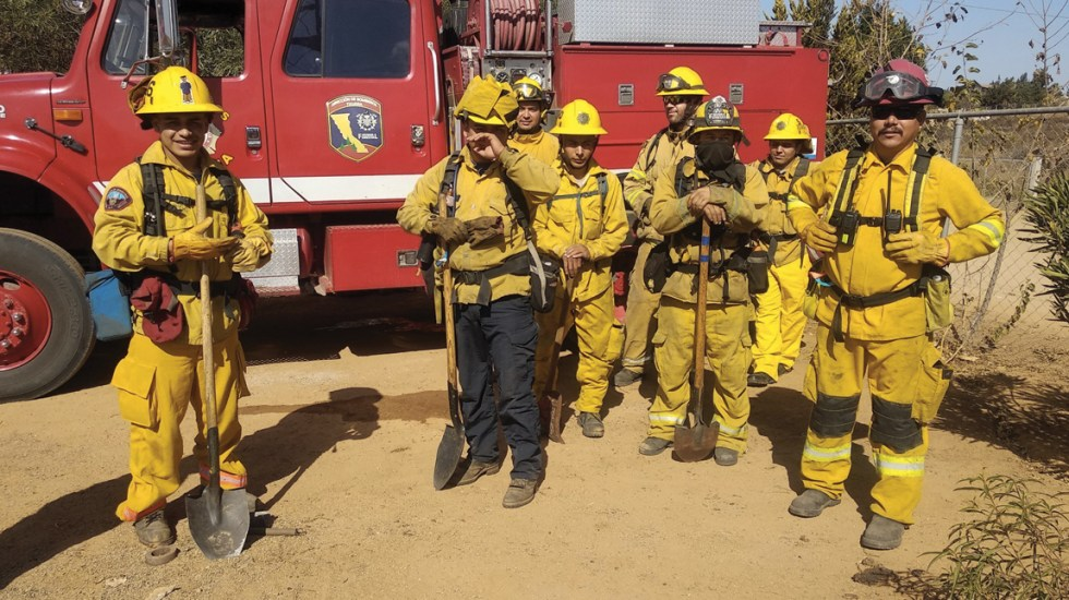 Preparan plan de contingencia en Baja California por vientos de Santa Ana - Foto de Conafor