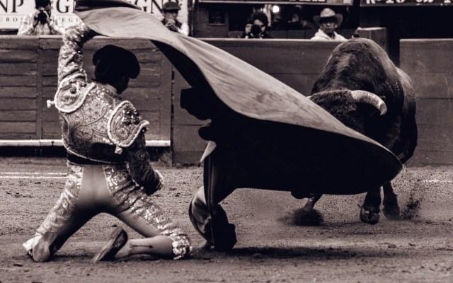 Ocho con Ocho: Toreando bajo la lluvia - Eduardo Neyra en su primero de la tarde. Foto La Plaza México.