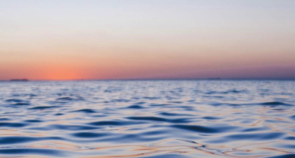 Acidificación del agua provocó extinción masiva hace 66 millones de años - Océano mar agua extinción