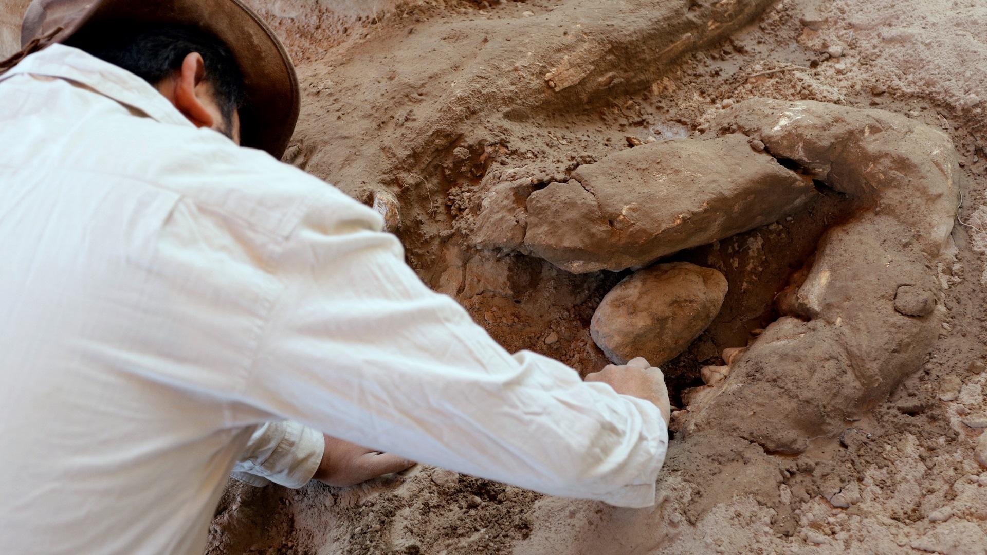 Paleontólogo analizando restos de mastodonte. Foto de EFE