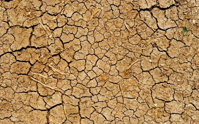 Sequía obliga a campesinos de Edomex a usar aguas residuales - Foto de Dan Gold para Unsplash