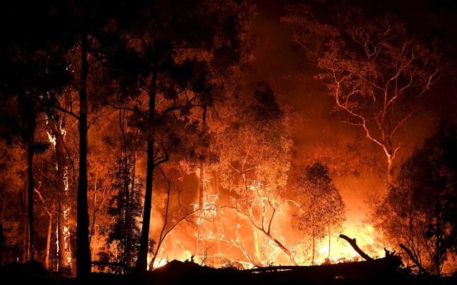 Afectan 55 incendios más de dos mil hectáreas en 11 estados de México - Imagen ilustrativa de un incendio foresta