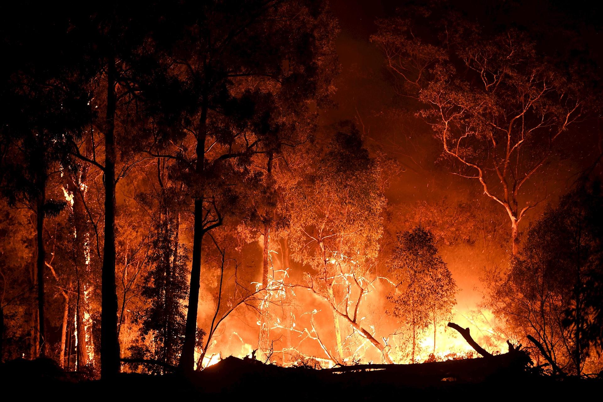 El incendio de Gospers Mountain se acerca a una propiedad en Colo Heights, Nueva Gales del Sur (NSW), Australia. Según los informes de los medios, el Servicio de Bomberos Rurales de Nueva Gales del Sur (RSF, por sus siglas en inglés) emitió una advertencia de emergencia por el incendio de la montaña Gospers, ya que las altas temperaturas cálidas y los fuertes vientos avivan los incendios forestales en todo el estado. (Incendio) EFE / EPA / DAN HIMBRECHTS AUSTRALIA Y NUEVA ZELANDA FUERA