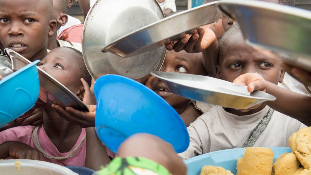 ONU advierte que 168 millones de personas necesitarán ayuda humanitaria en 2020 - Ayuda humanitaria. Foto de @un_photo / Flickr