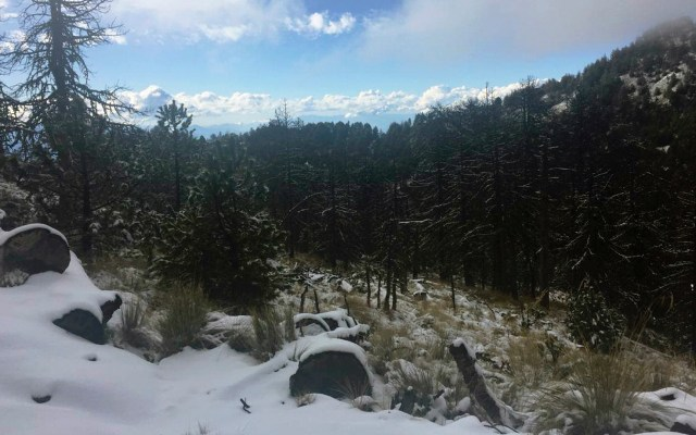 Lluvias fuertes, bajas temperaturas y caída de nieve en México por Frente Frío 25 - Foto de Archivo Notimex, por la entrada del frente frío 24 al país en el Nevado de Colima. Foto de Notimex-Especial
