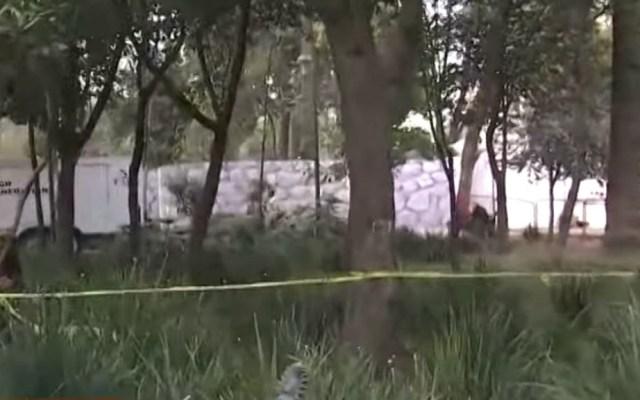 Encuentran muerto a hombre en situación de calle en el Jardín Pushkin - Jardín Pushkin muerto hombre