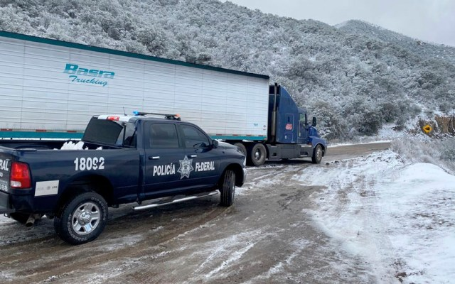 Caen nevadas en 12 municipios de Chihuahua - Caen nevadas en 12 municipios de Chihuahua
