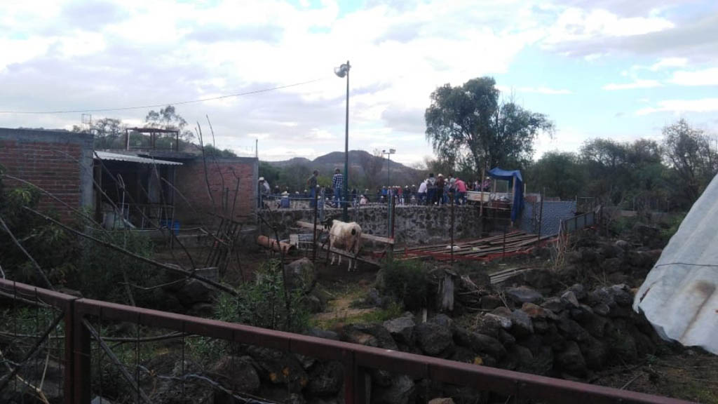 Desplome de gradas en Plaza de Toros de Morelia deja cuatro lesionados - Plaza de Toros Morelia Michoacán