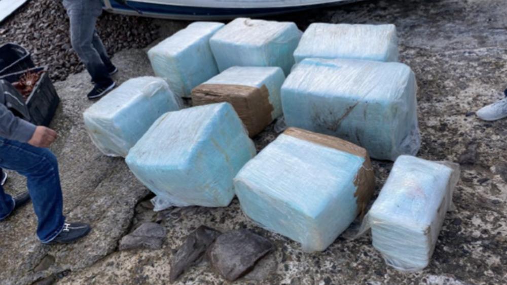 Militares aseguran droga valuada en más de 3.7 mdp en Baja California - Foto de Sedena