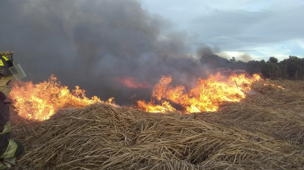 #Video Incendio consume pastizal en Xochimilco - Foto de Bomberos CDMX