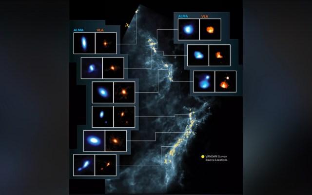 Descubren más de 300 discos protoplanetarios en las nubes de Orión - Foto: almaobservatory.org/