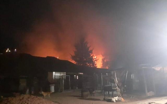 Incendian refugio de animales Manada San en el Edomex - Incendian refugio de animales Manada San; bomberos extinguen el fuego sin registrarse heridos