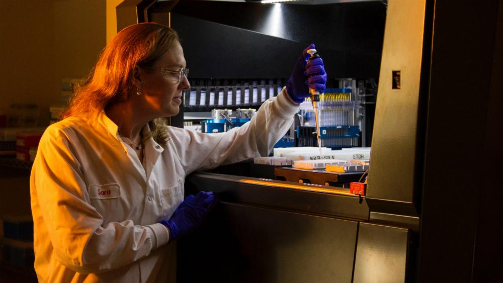 Estudio con pacientes de angiosarcoma desvela posibles nuevas terapias - Foto National Cancer Institute para Unsplash